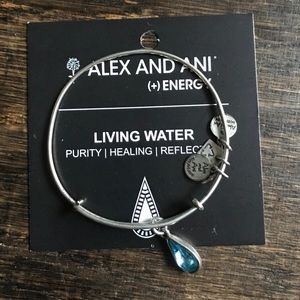 Alex and Ani Silver Living Water Bangle
